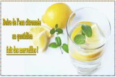 Nous ajoutons souvent une tranche de citron pour donner un peu de vie à un verre d'eau. Mais saviez-vous que boire de l'eau avec du citron tous les jours offre de nombreux bienfaits pour la santé ?