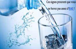 Un trop grand nombre d'entre nous ne boit pas assez d'eau quotidiennement. En nous privant de la ressource la plus naturelle du monde, nous nuisons à notre corps.