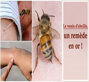 La piqûre d'abeille est douloureuse, voire parfois mortelle, mais offre des bienfaits parfois insoupçonnés qui sont d'ailleurs intégrés dans des traitements médicaux ou dans des cosmétiques.
